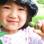 大沼ふるさとの森自然学校03